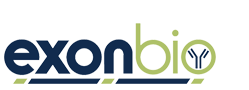 exonbio Blog - A Blog Focusing on Antibody Research
